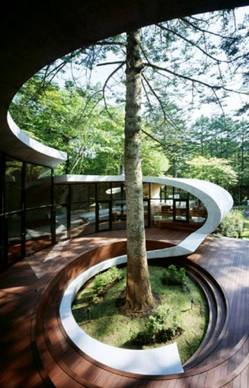 The Shell House : Kotaro Ide, The Japanese Ecologist...