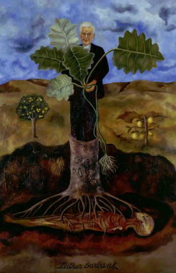 Frida Kahlo/Retrato de Luther Burbank (Portrait of Luther Burbank), 1932_Colecci�n Museo Dolores Olmedo, Xochimilco, M�xico