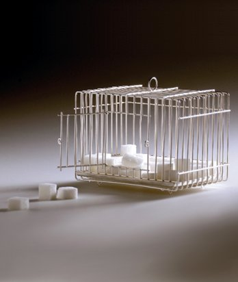 """Marcell"" Sugar cage_Lachaert and d'Hanis (BE) For Droog Design, 2004"